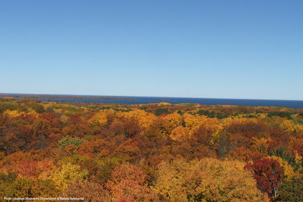 View from tower at Kathio State Park